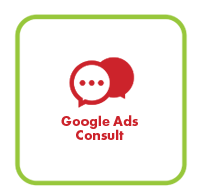 Google Ads Consult services